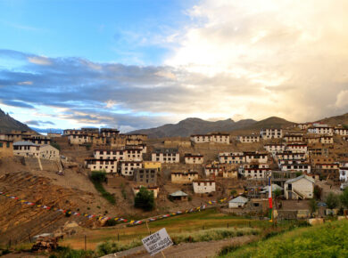 spiti-valley-uncrushedleaves